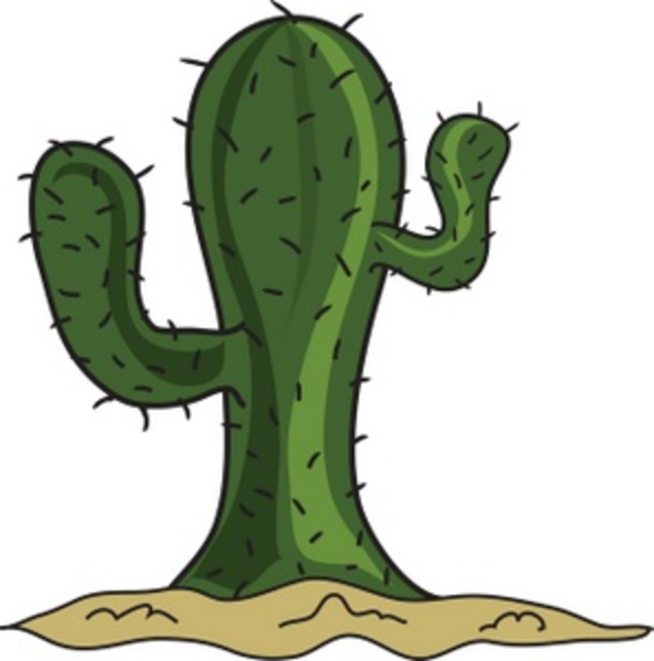 Mexican Cactus Cartoon Cartoon Cactus Smu Image