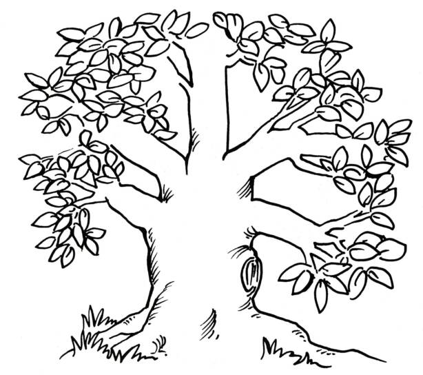 Giving Tree Clipart - Clipart Suggest