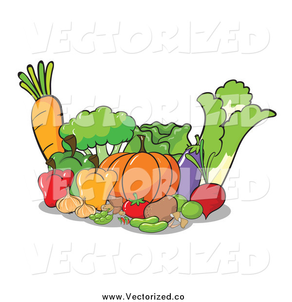 Royalty Free Clipart Of Fresh Vegetables By Colematt    132243