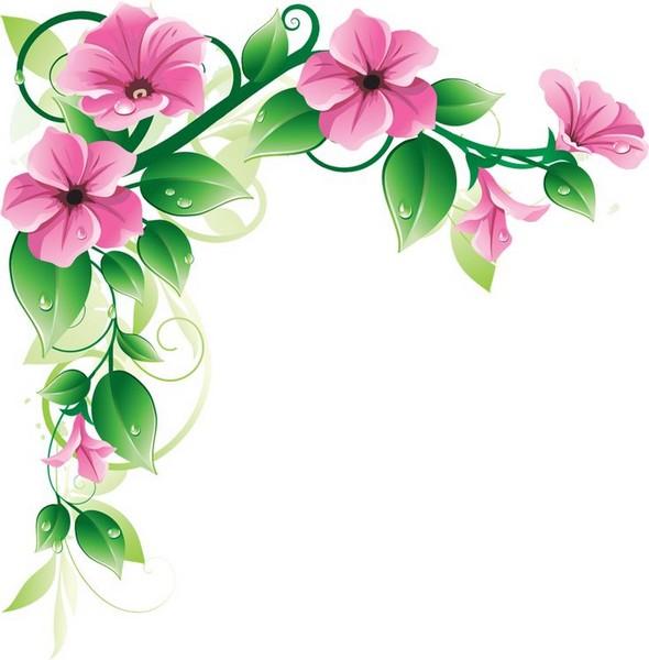 Fleurs Printemps Cadre Roses   Encadrement Roses D Cos