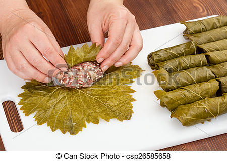 Cabbage Rolls With Grape Leaves   Csp26585658