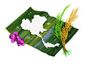 Jasmine Rice Of Thailand S Map Shap   Royalty Free Clip Art