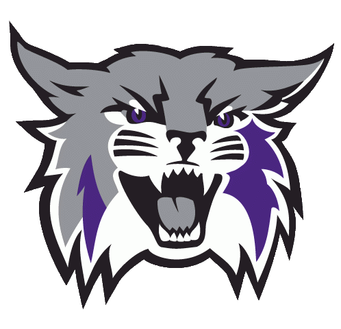 Image result for wildcats