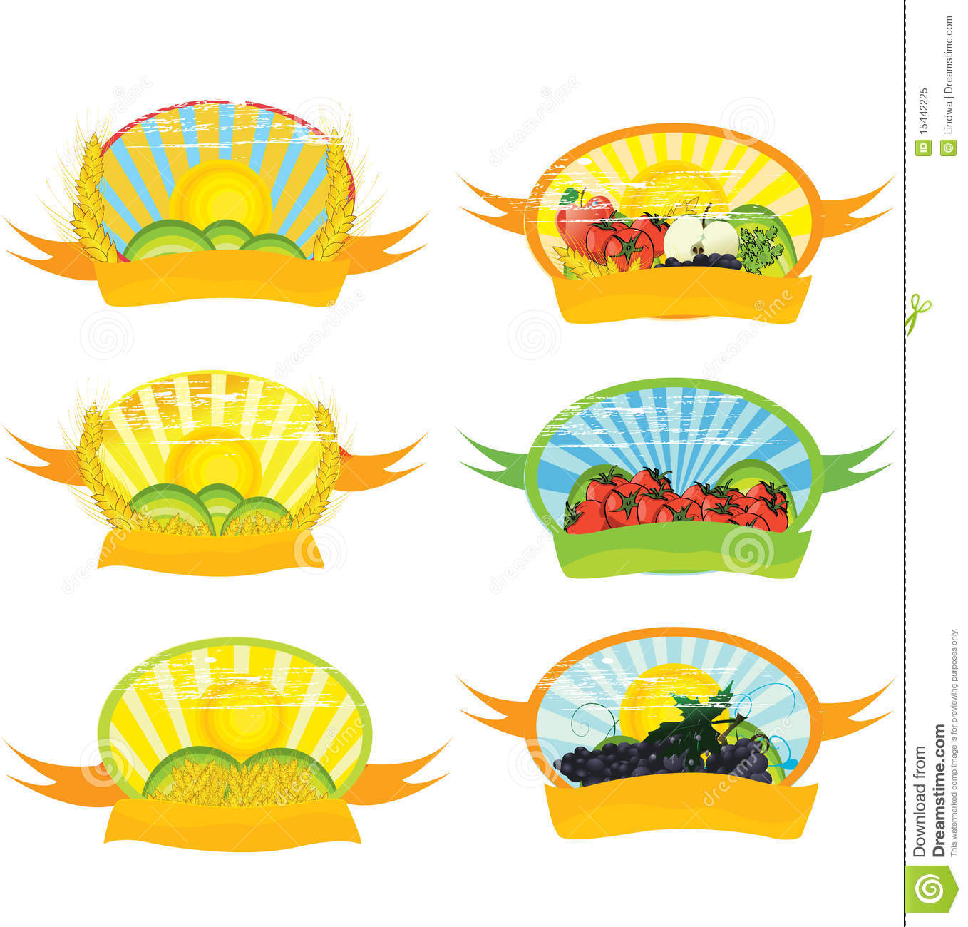 Vegetable Labels Royalty Free Stock Photo   Image  15442225