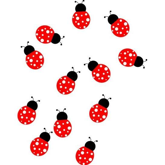 Cute Ladybug Clipart - Clipart Kid