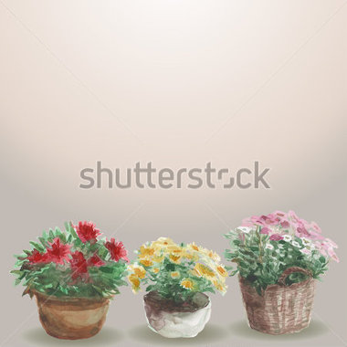 Yellow Pink Red Flower In A Flower Pot Beige Background  Watercolor
