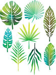 Leaves Vector Clip Art Eps Images  9965 Tropical Leaves Clipart
