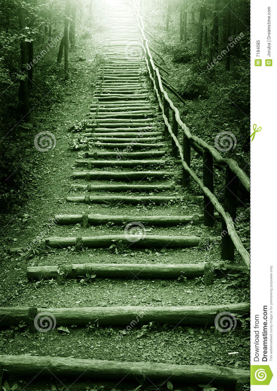 Stairway To Heaven In Mystic Forest