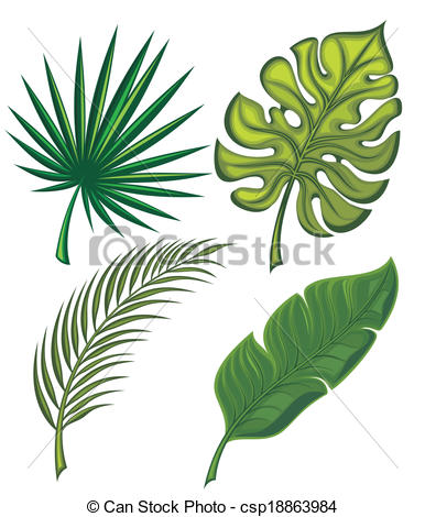 Vector Of Set Of Tropical Leaves   Collection Of Leaves Csp18863984