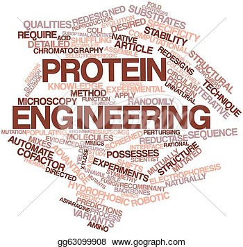 Stock Illustration   Abstract Word Cloud For Protein Engineering With