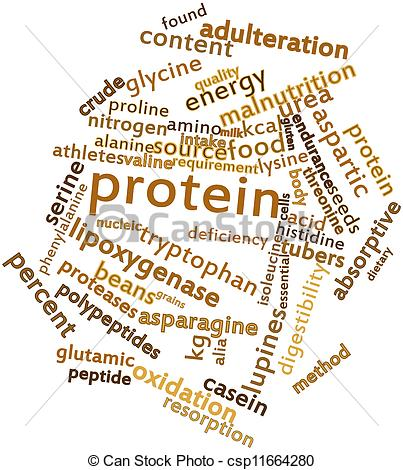 Stock Illustration Of Word Cloud For Protein   Abstract Word Cloud