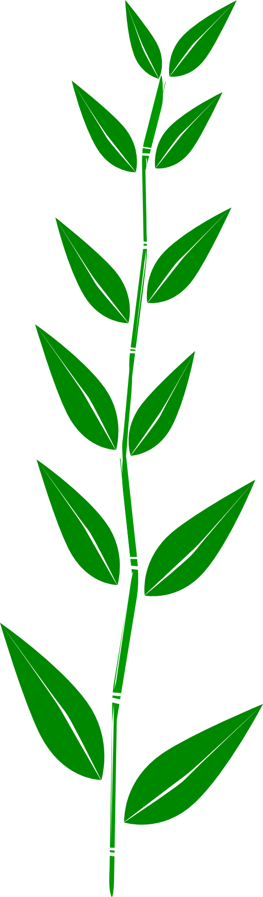 Bamboo Leaf Clipart Royalty Free Public Domain Clipart