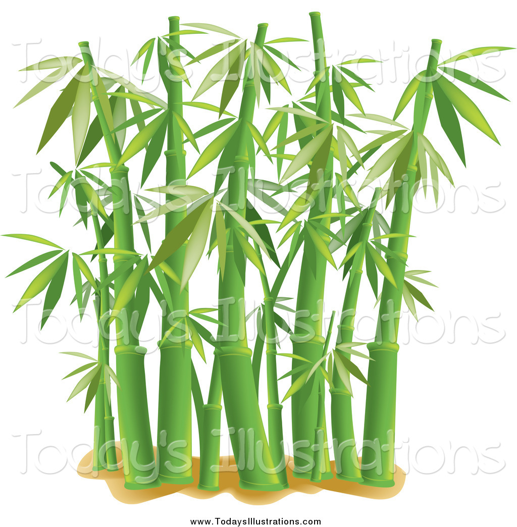 Bamboo leaf clipart suggest
