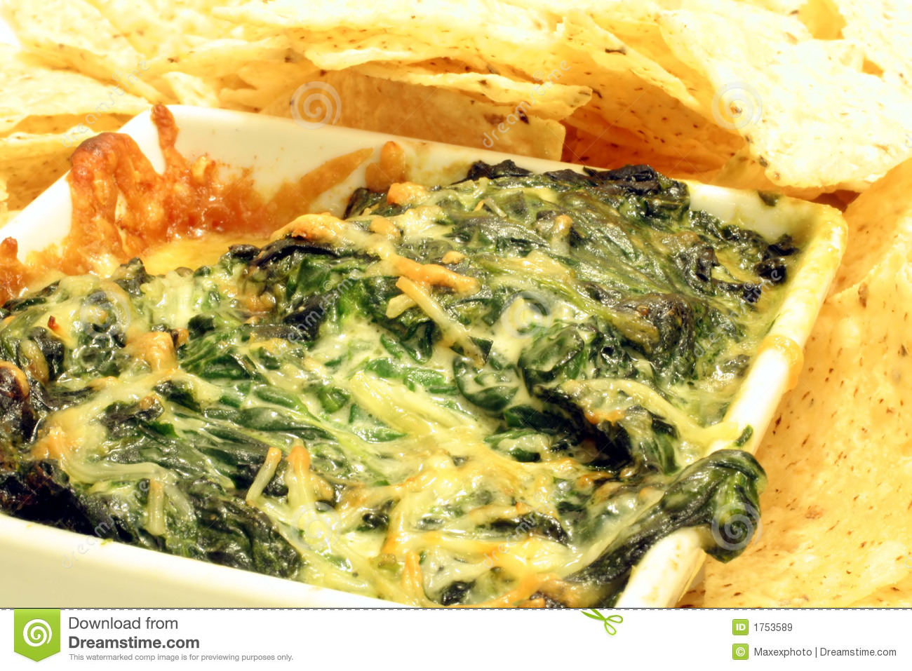 Spinach And Cheese Dip Royalty Free Stock Images   Image  1753589