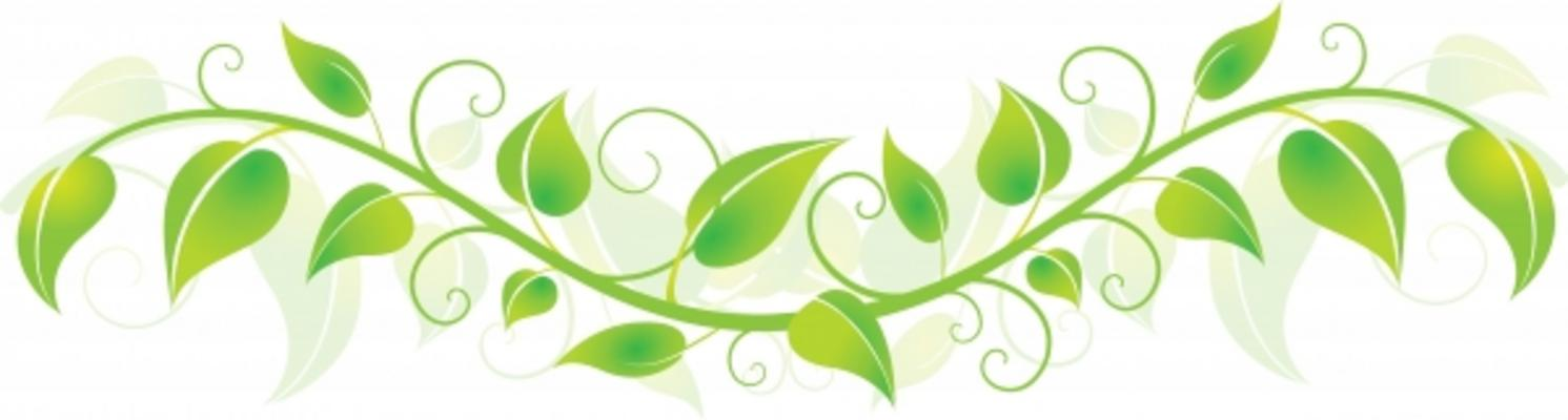 Green Vines Clipart - Clipart Kid