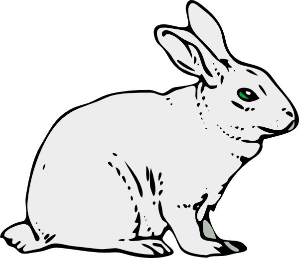 Running Rabbit Drawing Outline