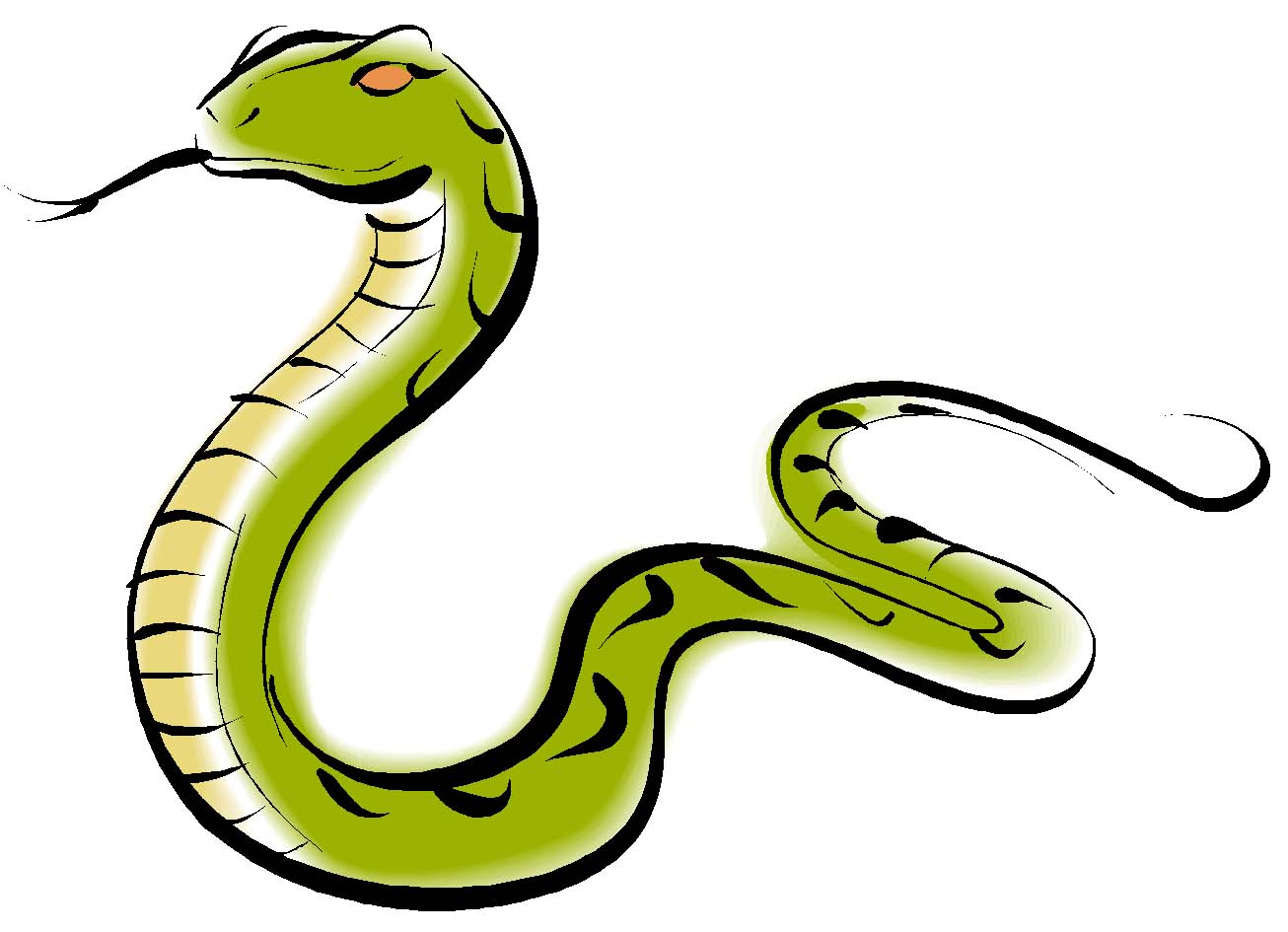 Snake Clipart Photo Wallpapers Download
