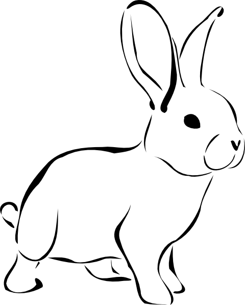 White Rabbit Clip Art At Clker Com   Vector Clip Art Online Royalty