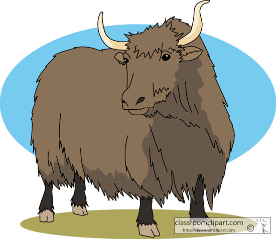 Line Drawing Yak : Cartoon yak clipart suggest