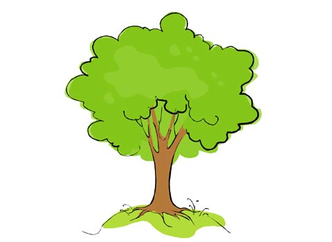 Cartoon Tree Drawing Free Cliparts That You Can Download To You