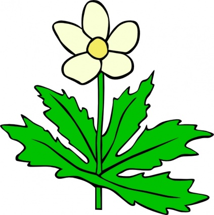 Plant Leaves Clipart Plants Leaf Flower Flowers