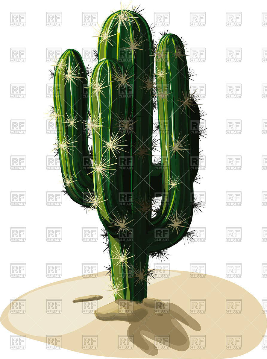 Mexican Cactus Clipart - Clipart Kid
