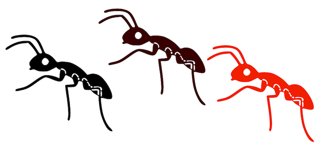 Ants Marching Clipart The Ants Come Marching In