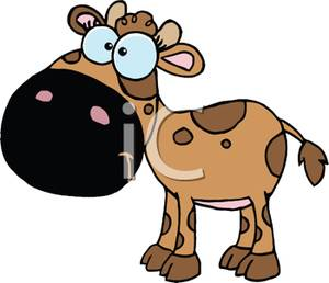 Cow With A Puzzled Look On Its Face   Royalty Free Clipart Picture
