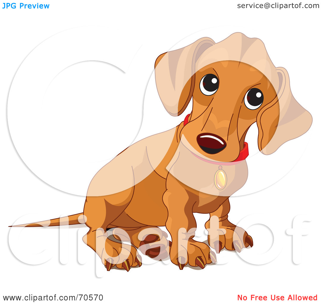 Free  Rf  Clipart Illustration Of A Beige Wiener Dog Puppy Sitting