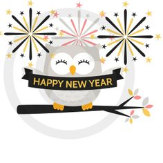Happy New Year On Pinterest   New Year S New Years Eve And Feng Shui
