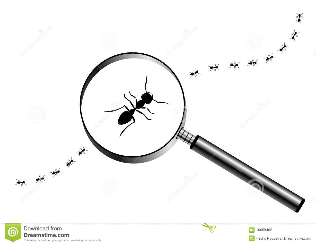 Magnifying Glass With Marching Ants Stock Photography   Image