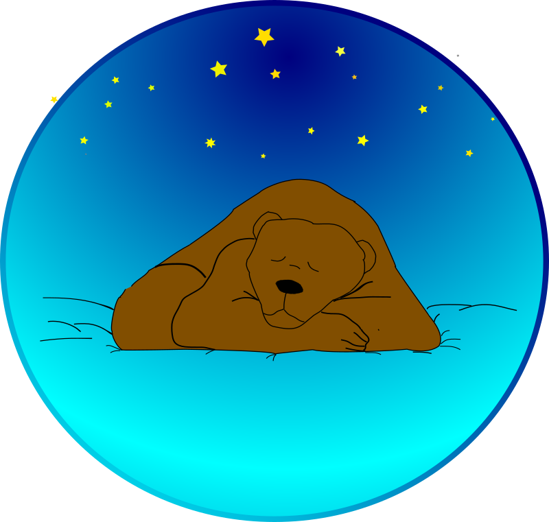 Sleeping Bear Under The Stars