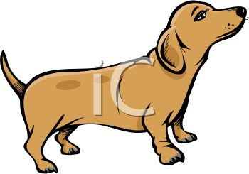 Wiener Dog Pup   Royalty Free Clipart Picture
