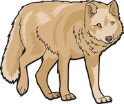Wolf Clipart And Graphics