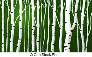 Abstract Birch Stems Background   Abstract Birch Stems