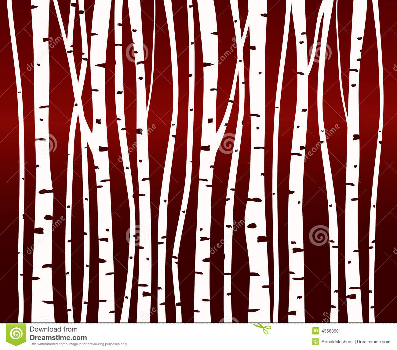 Birch Tree Forest Pattern Stock Illustration   Image  43560601