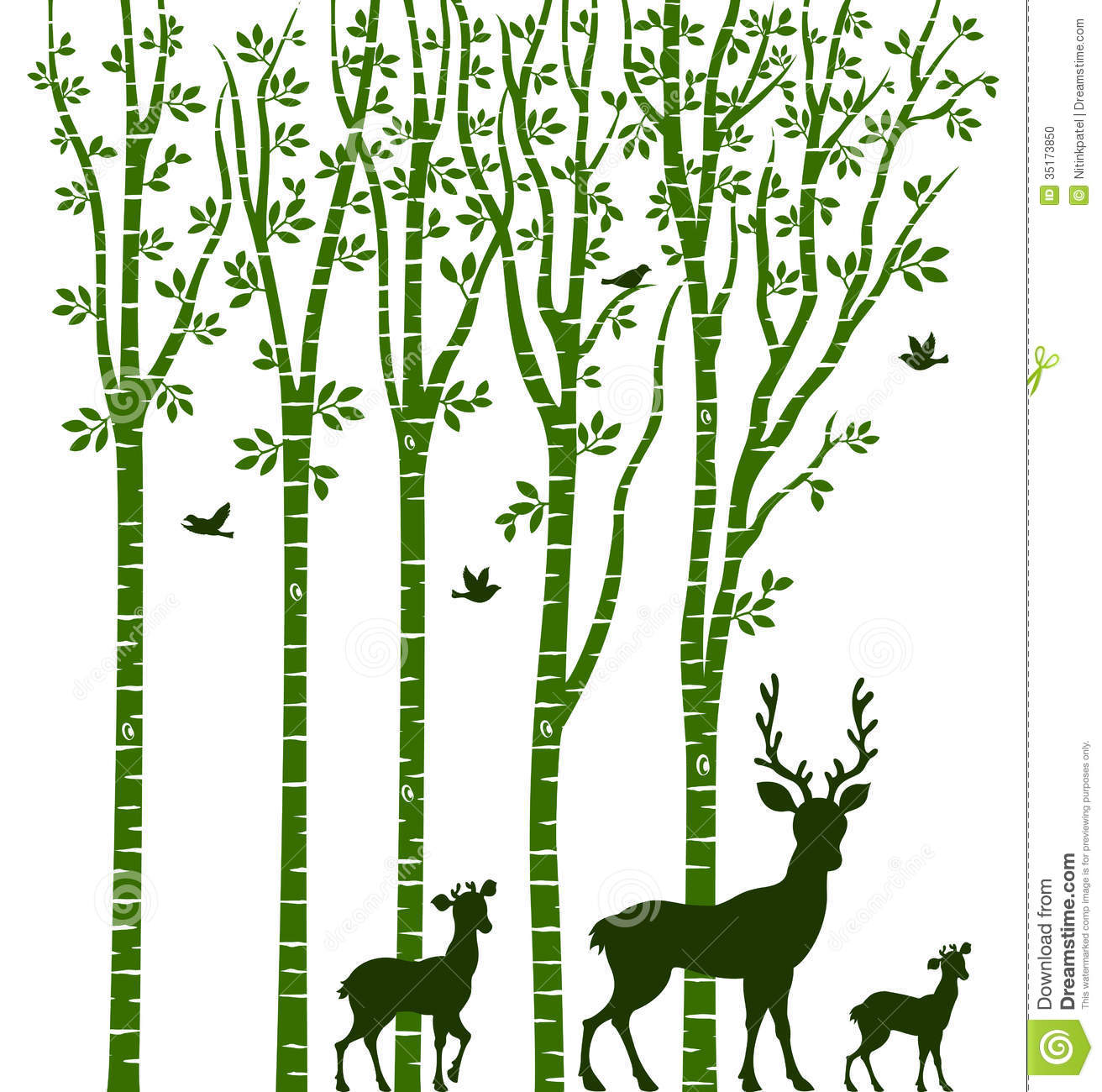 Birch Tree With Deer Stock Photo   Image  35173850