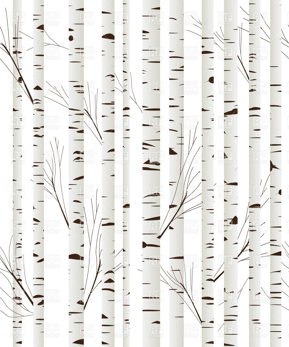Birch Wood Trees Background Download Royalty Free Vector Clipart  Eps