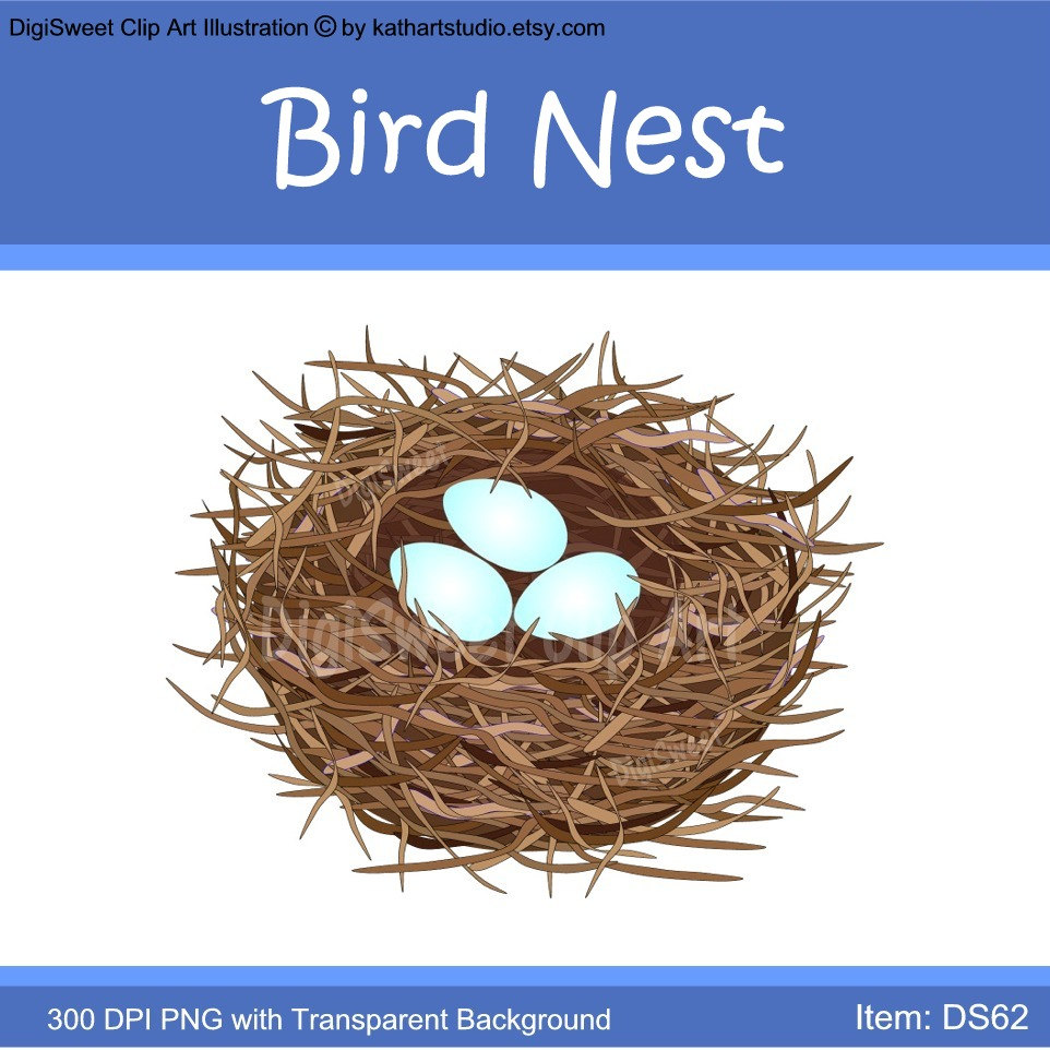 Bird Nest Clipart Bird Nest With Eggs Clip