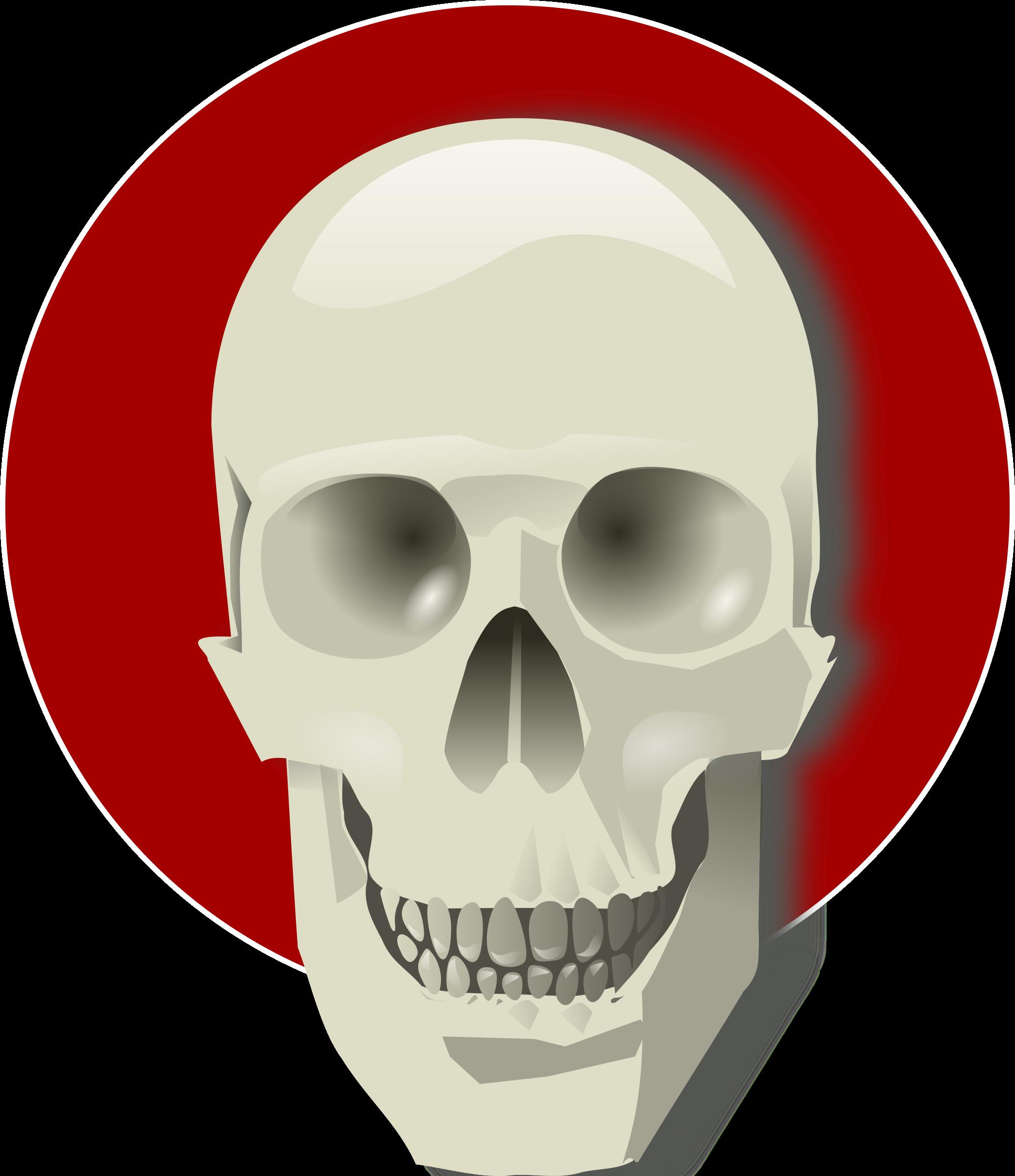 Human Skull By Rg1024