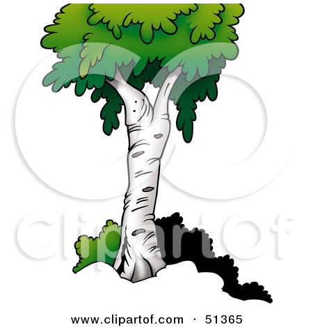 Royalty Free  Rf  Birch Tree Clipart   Illustrations  1