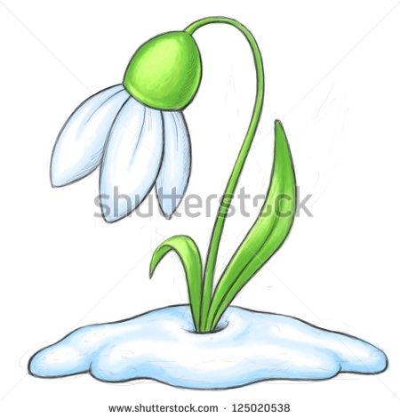 Snowdrop Cartoon Illustration   Bitmap Clipart   Stock Photo