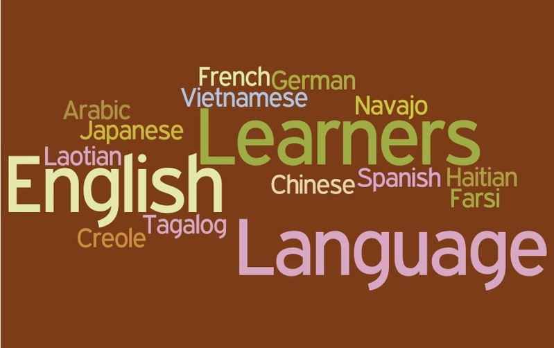 Describe The Good Language Learner According To The Following