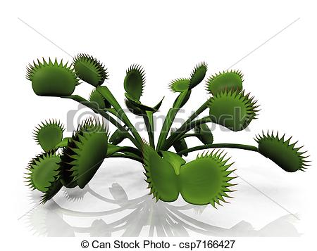 Stock Illustrations Of Venus Flytrap Csp7166427   Search Eps Clipart