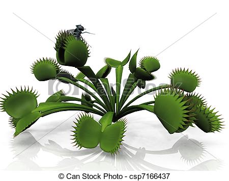 Stock Illustrations Of Venus Flytrap Csp7166437   Search Eps Clipart