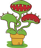 Venus Flytrap Clipart And Illustrations