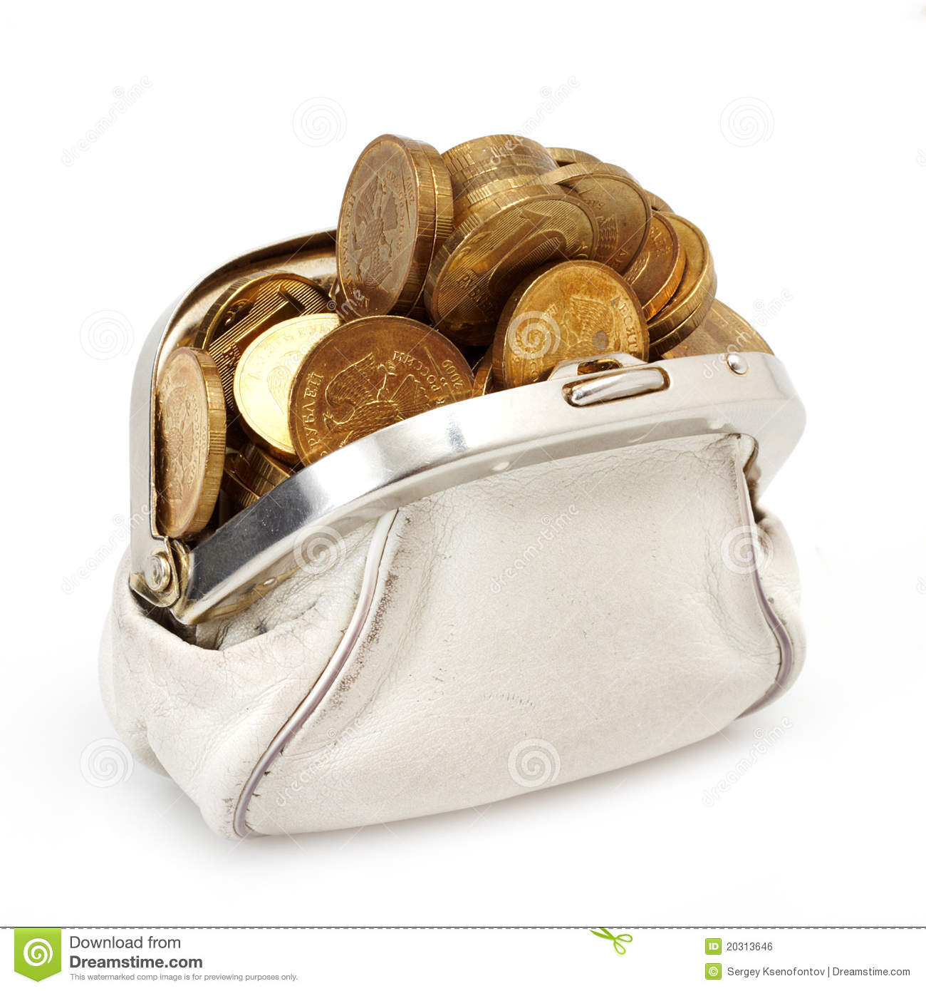 Open Purse With Gold Coins Royalty Free Stock Image   Image  20313646