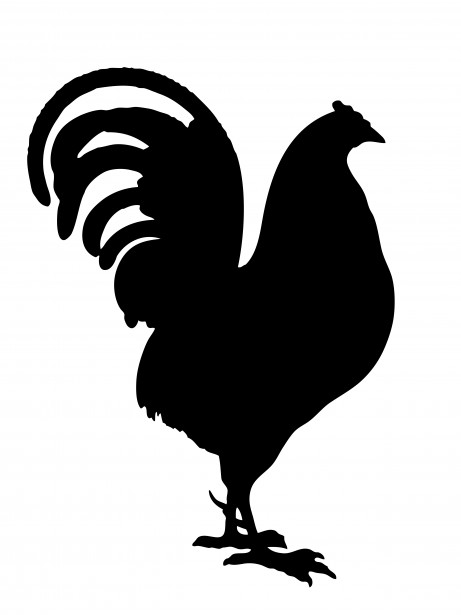 Rooster Black Silhouette Clipart Free Stock Photo   Public Domain