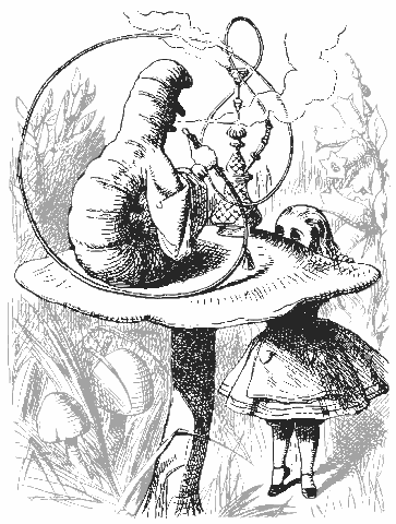 Books Alice In Wonderland Alice Meets The Caterpillar Png Html