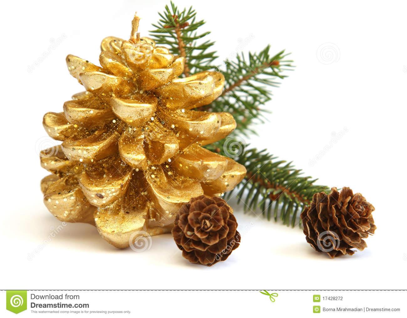 christmas pine cone drawing - photo #39